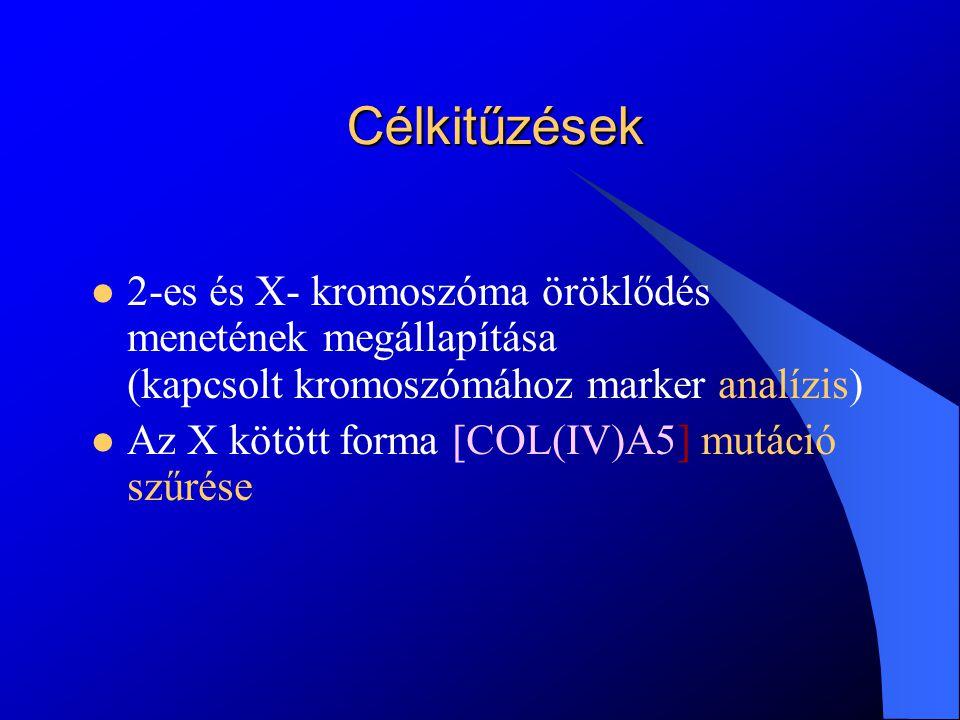 Betegek és módszerek Betegek 17 család 110 tagja – kapcsoltsági analízis Módszerek Sort tandem repeat (STR) analízis Restriction fragment length polymorphism (RFLP) analízis High-resolution melting (HRM) (Magas felbontású olvadáspont) analízis Szekvencia analízis 2- és X-kromoszómák öröklődés menetének megállapítása X-kromoszómához kötött öröklődésű betegek esetén Eltérő olvadáspontú minták
