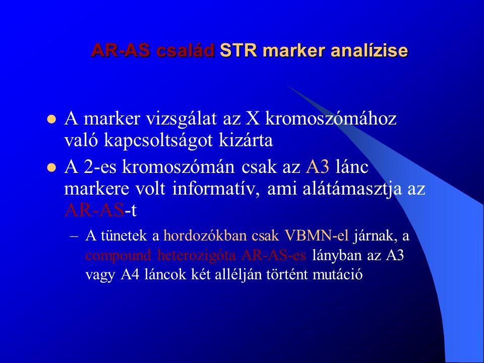 X-hez kötött AS család COL(IV)A5 STR marker analízise I As AS hematuria Hematuria A fiu Gyermeke esélye As-re 50 %