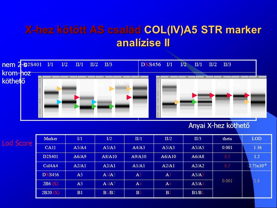 X-hez kötött AS család magas felbontású olvadáspont (HRM) analízise