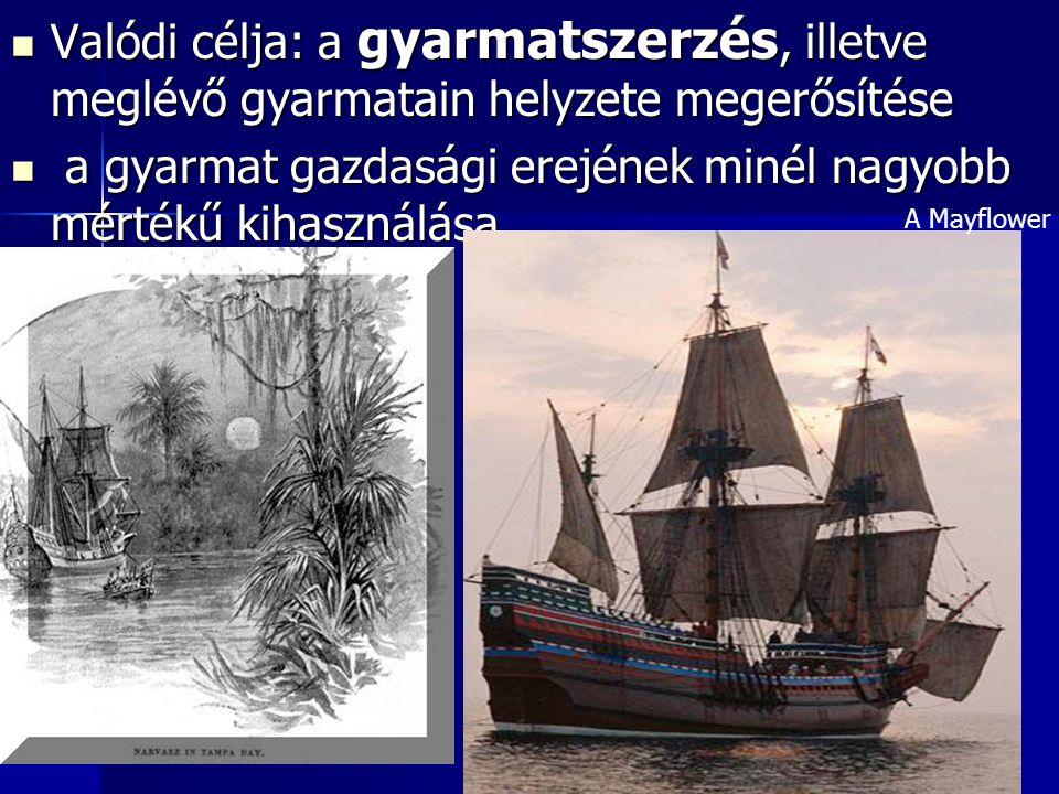 Valódi célja: a gyarmatszerzés, illetve meglévő gyarmatain helyzete megerősítése Valódi célja: a gyarmatszerzés, illetve meglévő gyarmatain helyzete m