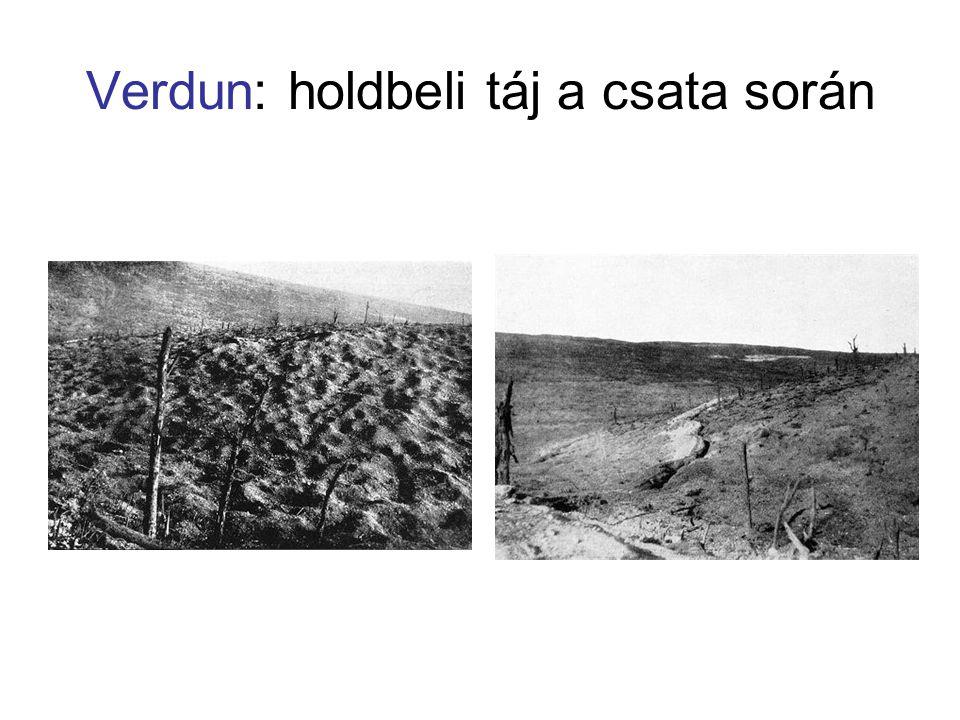 Verdun: holdbeli táj a csata során