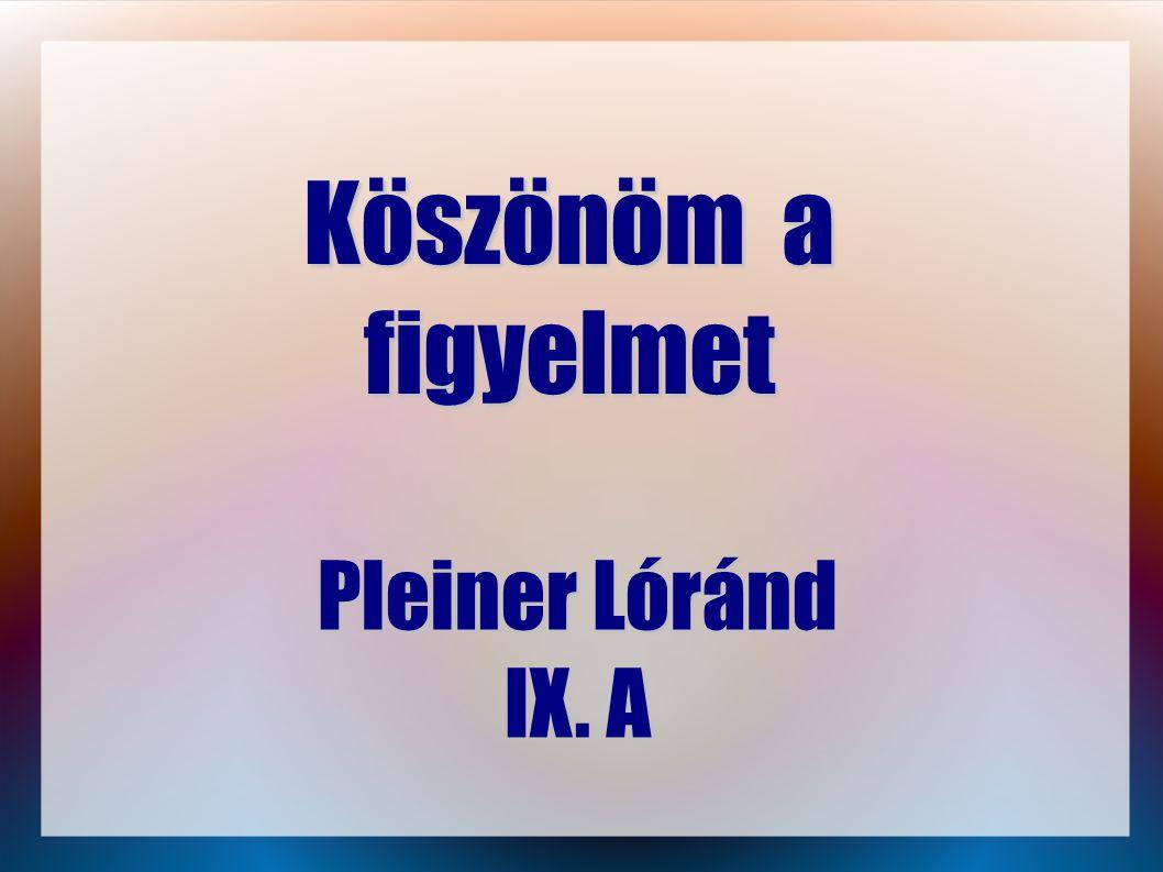 Köszönöm a figyelmet Pleiner Lóránd IX. A