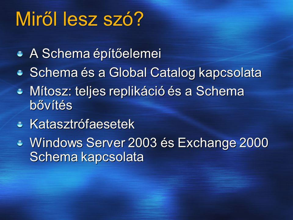 Miről lesz szó? A Schema építőelemei Schema és a Global Catalog kapcsolata Mítosz: teljes replikáció és a Schema bővítés Katasztrófaesetek Windows Ser