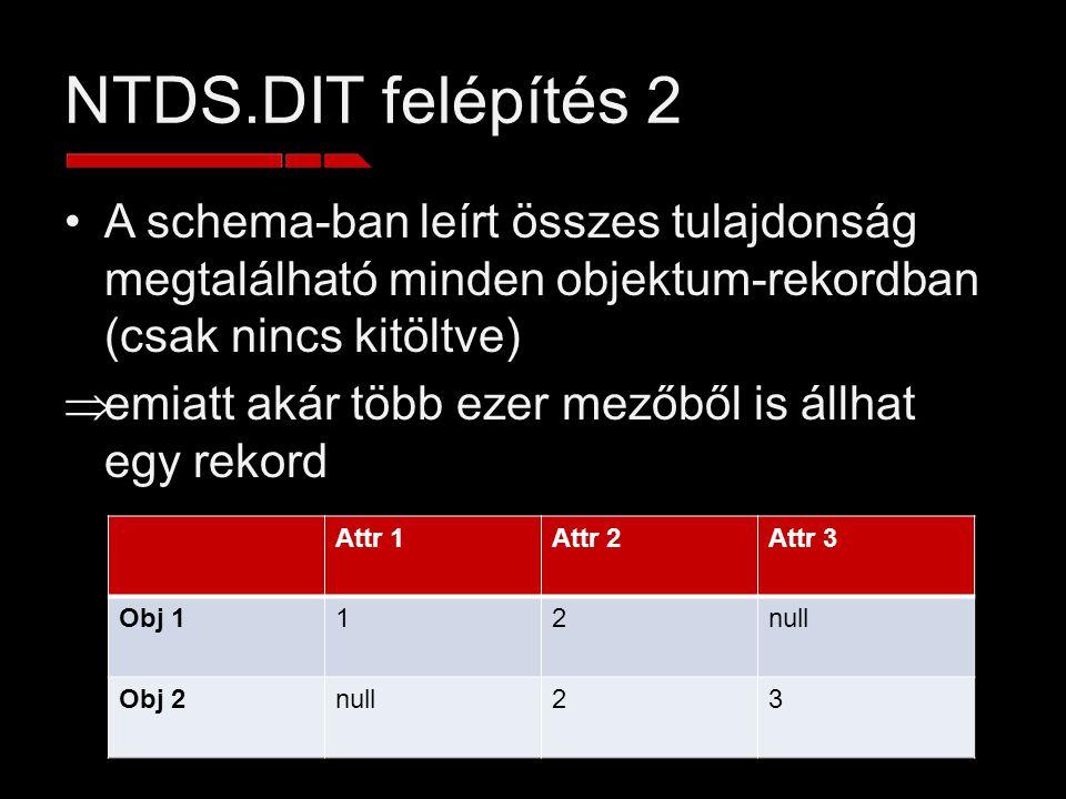 NTDS.DIT felépítés 2 A schema-ban leírt összes tulajdonság megtalálható minden objektum-rekordban (csak nincs kitöltve)  emiatt akár több ezer mezőbő