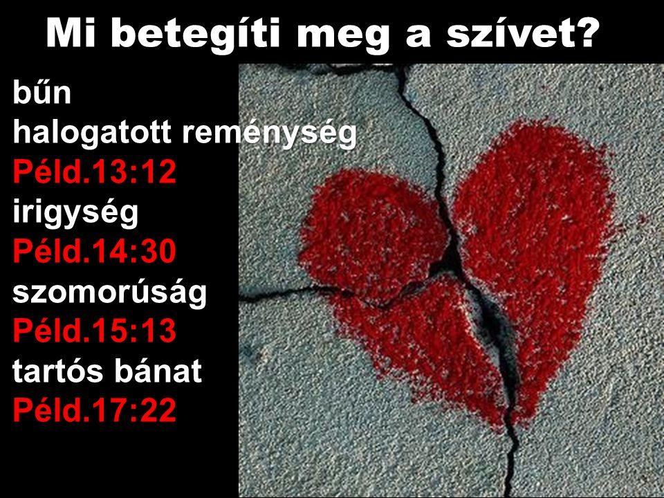 bűn halogatott reménység Péld.13:12irigységPéld.14:30szomorúságPéld.15:13 tartós bánat Péld.17:22 Mi betegíti meg a szívet