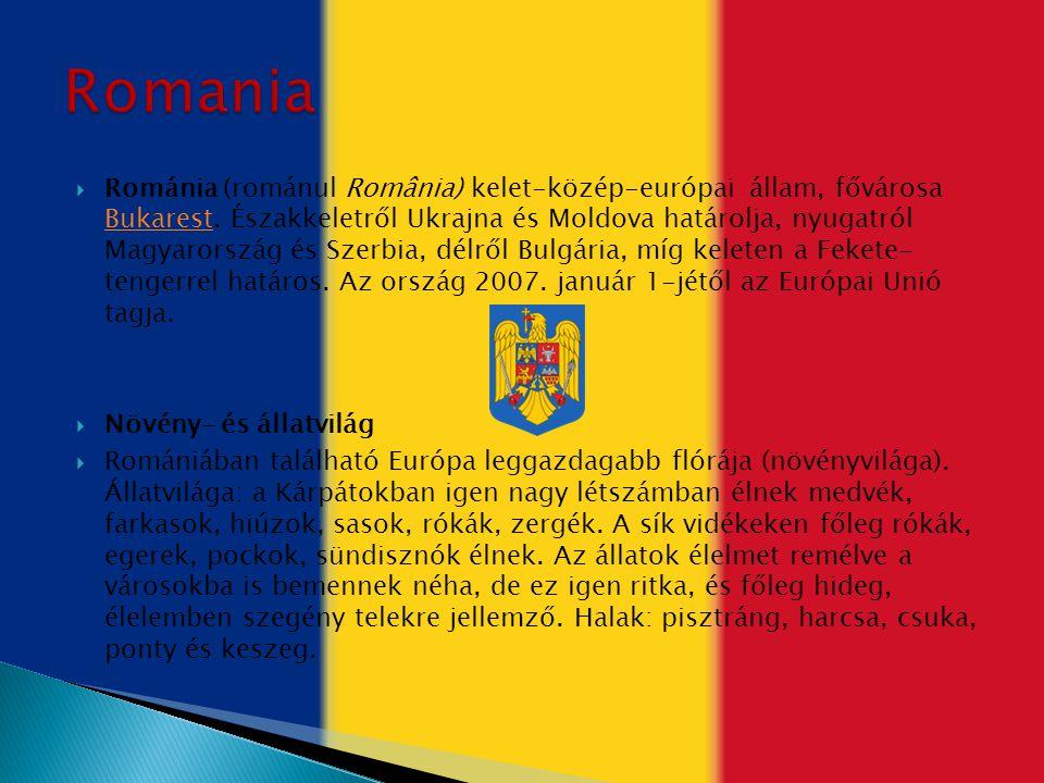  Románia (románul România) kelet-közép-európai állam, fővárosa Bukarest. Északkeletről Ukrajna és Moldova határolja, nyugatról Magyarország és Szerbi