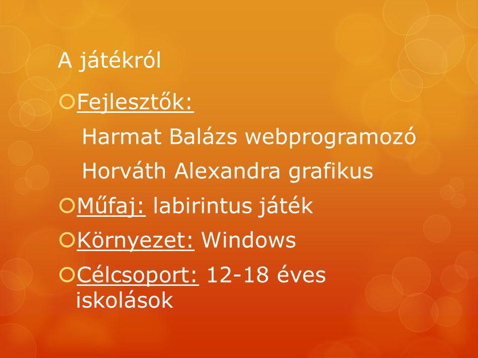 A játékról  Fejlesztők: Harmat Balázs webprogramozó Horváth Alexandra grafikus  Műfaj: labirintus játék  Környezet: Windows  Célcsoport: 12-18 éve