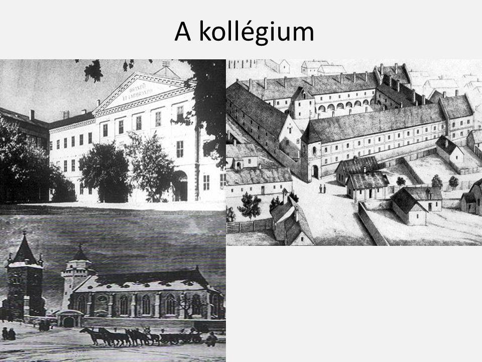 A kollégium