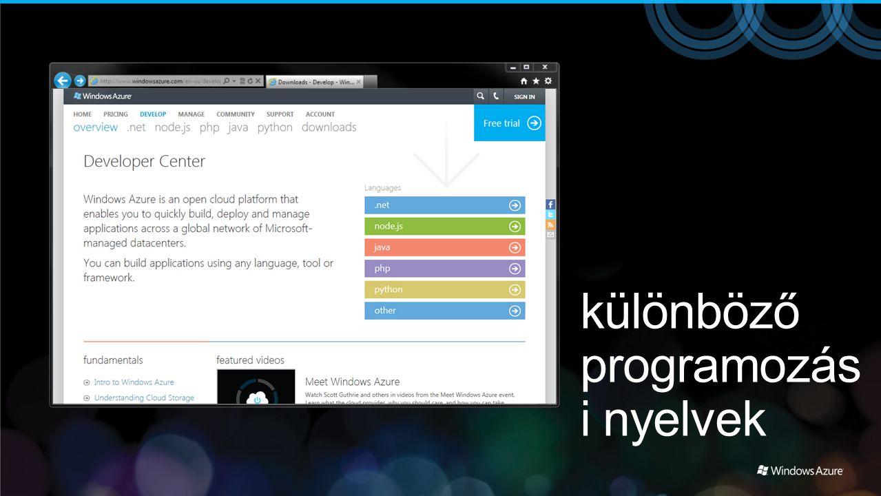 különböző programozás i nyelvek