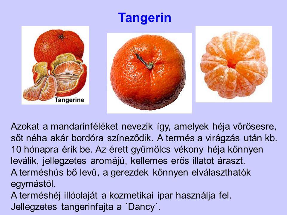 Azokat a mandarinféléket nevezik így, amelyek héja vörösesre, sőt néha akár bordóra színeződik. A termés a virágzás után kb. 10 hónapra érik be. Az ér