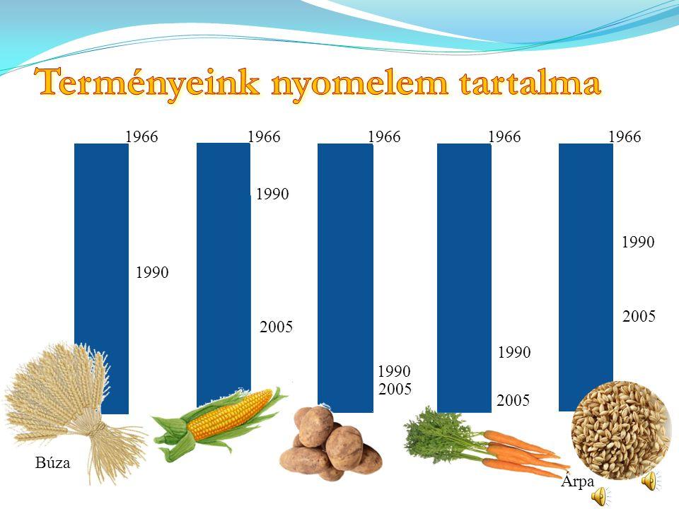 Gabona- gabonakészítmények Friss zöldségek és gyümölcsök Állati fehérje (hús, hal, tejtermék) + olajos magvak Tömény cukor, zsírok