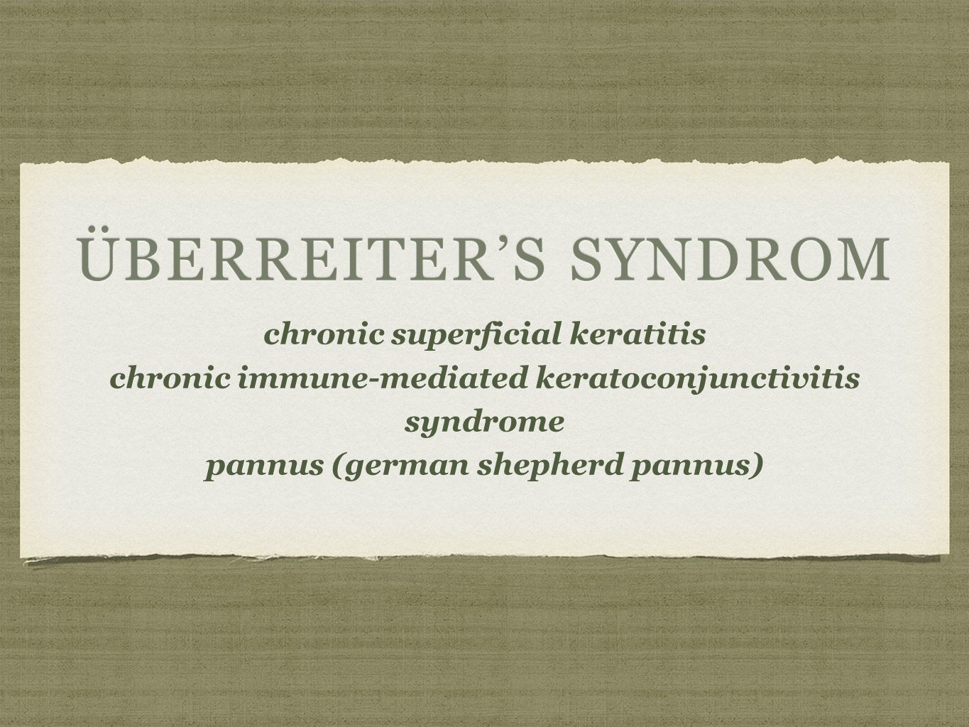 ÜBERREITER'S SYNDROM chronic superficial keratitischronic superficial keratitis chronic immune-mediated keratoconjunctivitis syndrome pannus (german shepherd pannus)pannus (german shepherd pannus)
