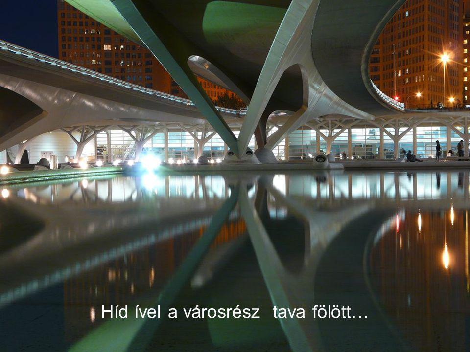 vagy a Tudományok Múzeumával, mint egy hal