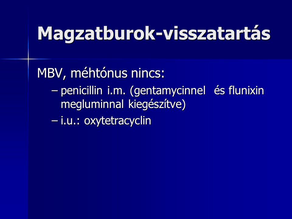 Magzatburok-visszatartás MBV, méhtónus nincs: –penicillin i.m.