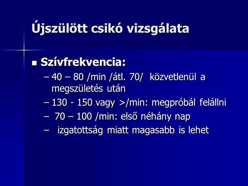 Újszülött csikó vizsgálata Szívfrekvencia: Szívfrekvencia: –40 – 80 /min /átl.
