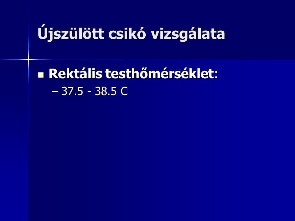 Újszülött csikó vizsgálata Rektális testhőmérséklet: Rektális testhőmérséklet: –37.5 - 38.5 C