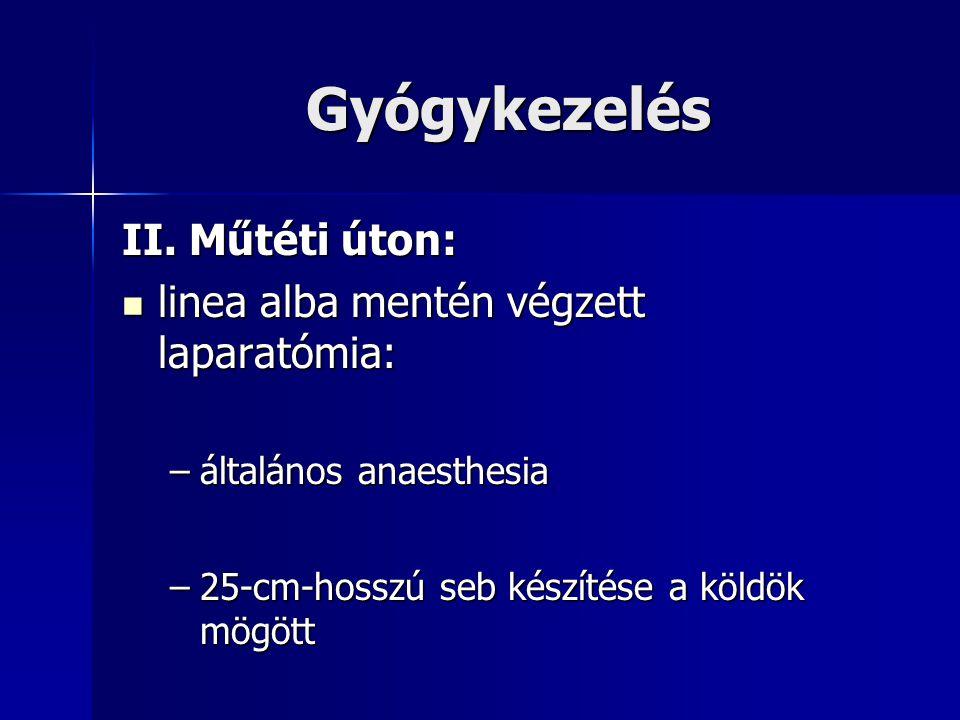 Gyógykezelés II.