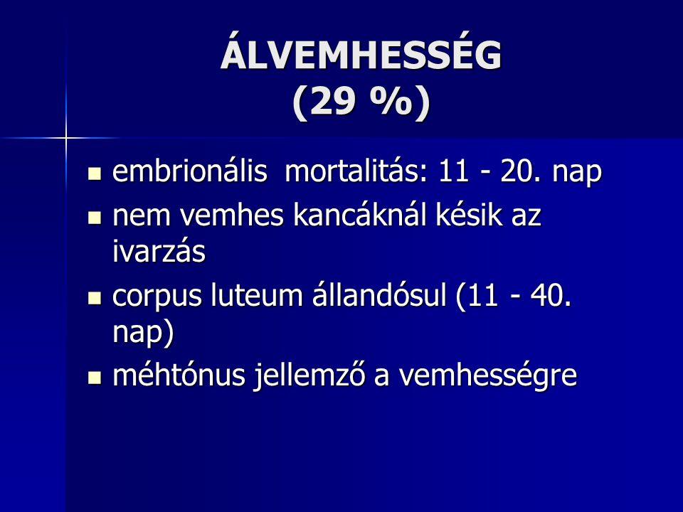ÁLVEMHESSÉG (29 %) embrionális mortalitás: 11 - 20.