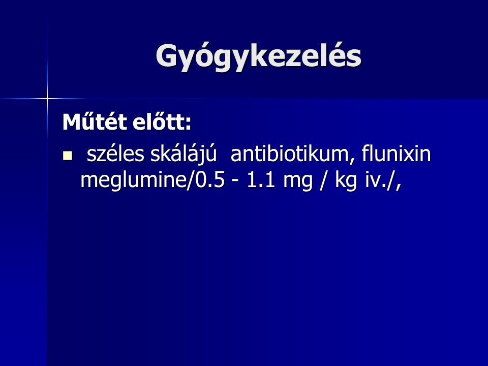 Gyógykezelés Műtét előtt: széles skálájú antibiotikum, flunixin meglumine/0.5 - 1.1 mg / kg iv./, széles skálájú antibiotikum, flunixin meglumine/0.5 - 1.1 mg / kg iv./,