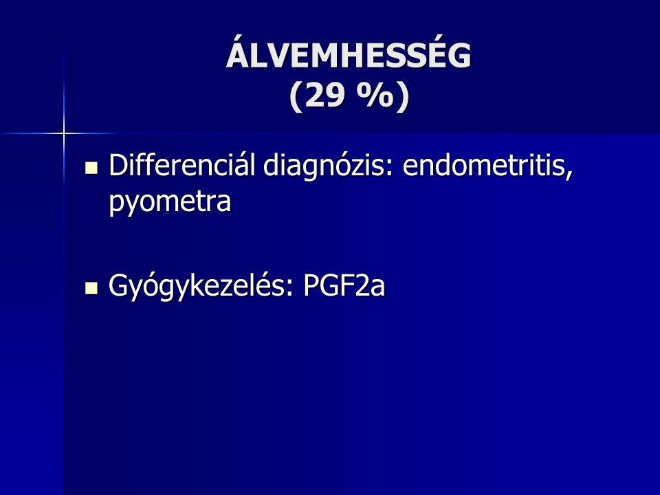 ÁLVEMHESSÉG (29 %) Differenciál diagnózis: endometritis, pyometra Differenciál diagnózis: endometritis, pyometra Gyógykezelés: PGF2a Gyógykezelés: PGF2a