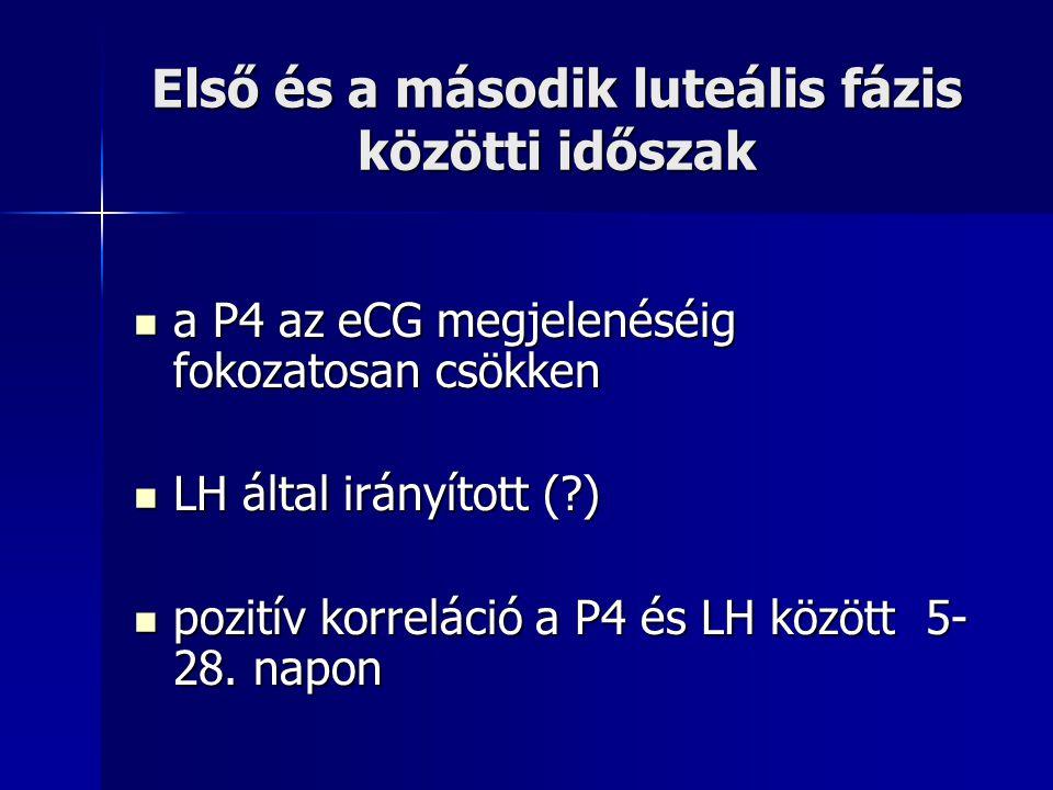 Első és a második luteális fázis közötti időszak a P4 az eCG megjelenéséig fokozatosan csökken a P4 az eCG megjelenéséig fokozatosan csökken LH által