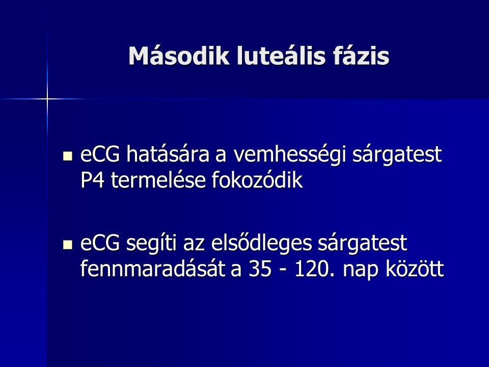 Második luteális fázis eCG hatására a vemhességi sárgatest P4 termelése fokozódik eCG hatására a vemhességi sárgatest P4 termelése fokozódik eCG segít