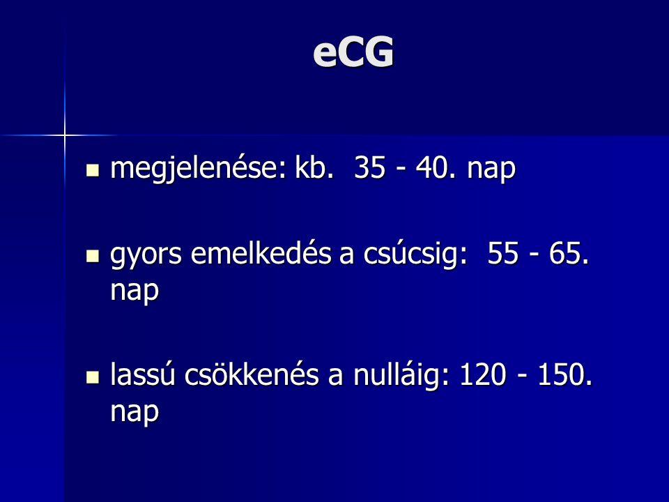 eCG megjelenése: kb. 35 - 40. nap megjelenése: kb. 35 - 40. nap gyors emelkedés a csúcsig: 55 - 65. nap gyors emelkedés a csúcsig: 55 - 65. nap lassú