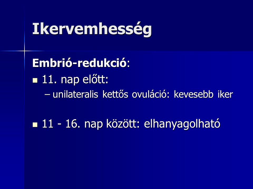 Ikervemhesség Embrió-redukció: 11. nap előtt: 11. nap előtt: –unilateralis kettős ovuláció: kevesebb iker 11 - 16. nap között: elhanyagolható 11 - 16.