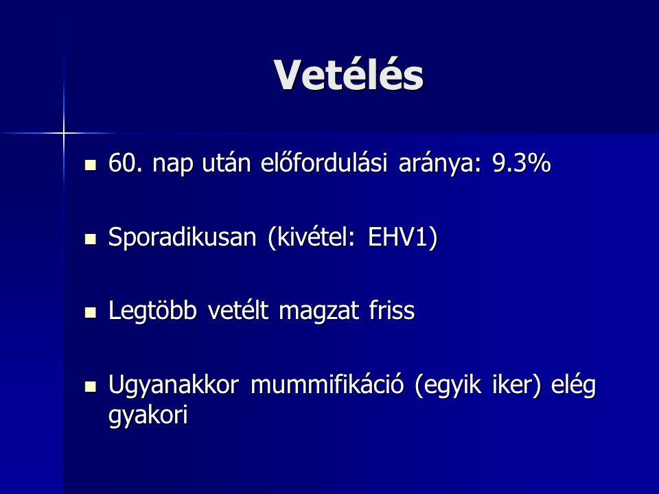 Vetélés 60. nap után előfordulási aránya: 9.3% 60. nap után előfordulási aránya: 9.3% Sporadikusan (kivétel: EHV1) Sporadikusan (kivétel: EHV1) Legtöb