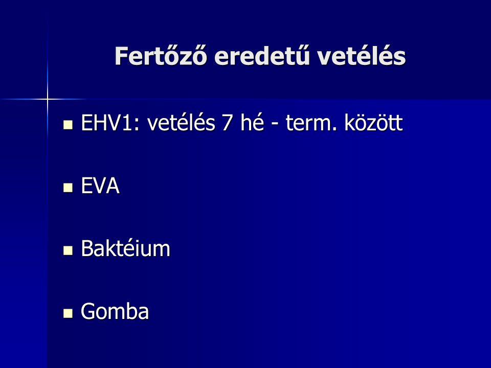 Fertőző eredetű vetélés EHV1: vetélés 7 hé - term. között EHV1: vetélés 7 hé - term. között EVA EVA Baktéium Baktéium Gomba Gomba
