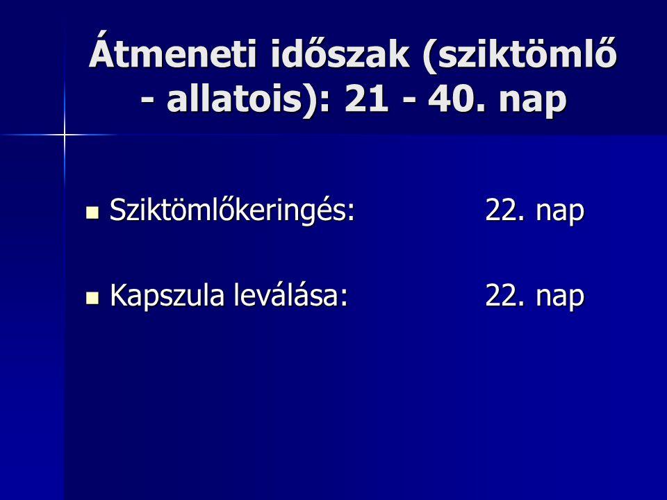 Átmeneti időszak (sziktömlő - allatois): 21 - 40. nap Sziktömlőkeringés: 22. nap Sziktömlőkeringés: 22. nap Kapszula leválása: 22. nap Kapszula leválá