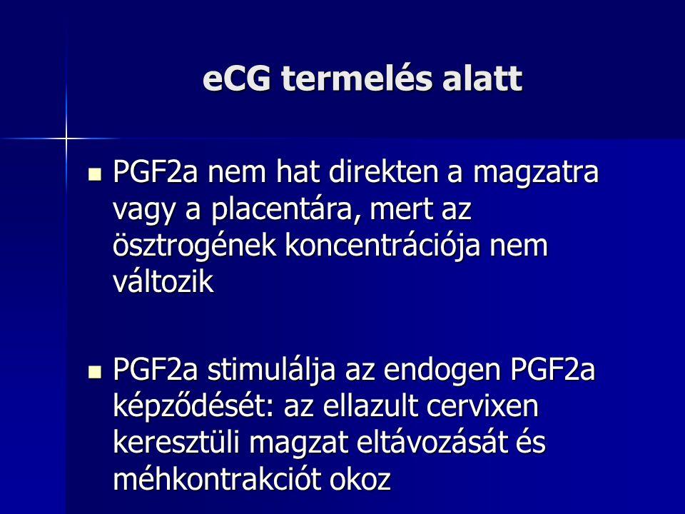 eCG termelés alatt PGF2a nem hat direkten a magzatra vagy a placentára, mert az ösztrogének koncentrációja nem változik PGF2a nem hat direkten a magza