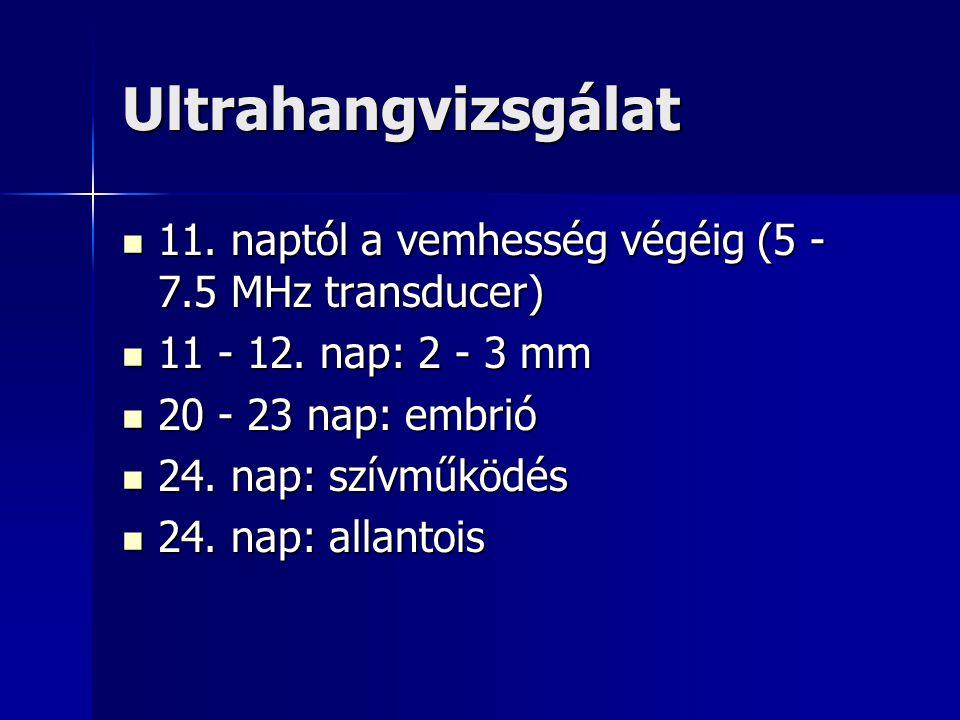 Ultrahangvizsgálat 11. naptól a vemhesség végéig (5 - 7.5 MHz transducer) 11. naptól a vemhesség végéig (5 - 7.5 MHz transducer) 11 - 12. nap: 2 - 3 m