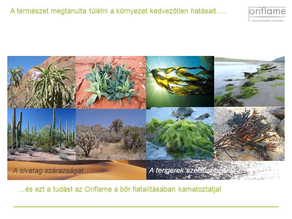 A természet megtanulta túlélni a környezet kedvezőtlen hatásait…. A sivatag szárazságát…............ A tengerek szélsőségeit... …és ezt a tudást az Or