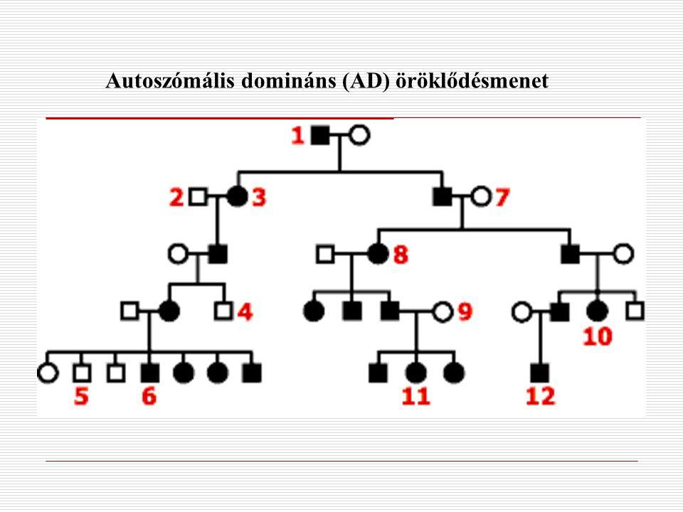 Autoszómális domináns (AD) öröklődésmenet