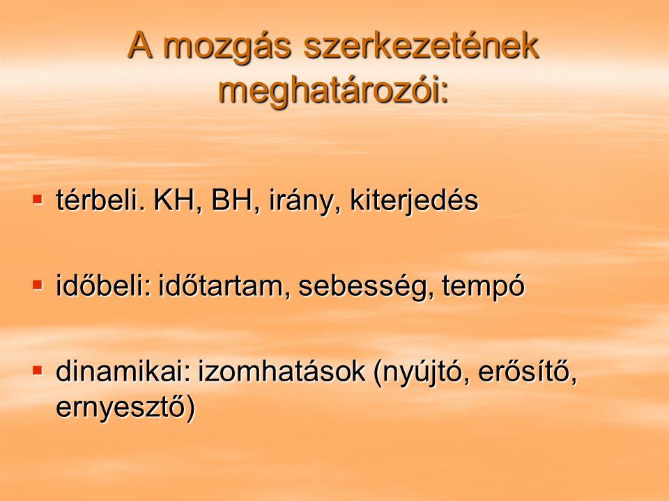 A mozgás szerkezetének meghatározói:  térbeli. KH, BH, irány, kiterjedés  időbeli: időtartam, sebesség, tempó  dinamikai: izomhatások (nyújtó, erős