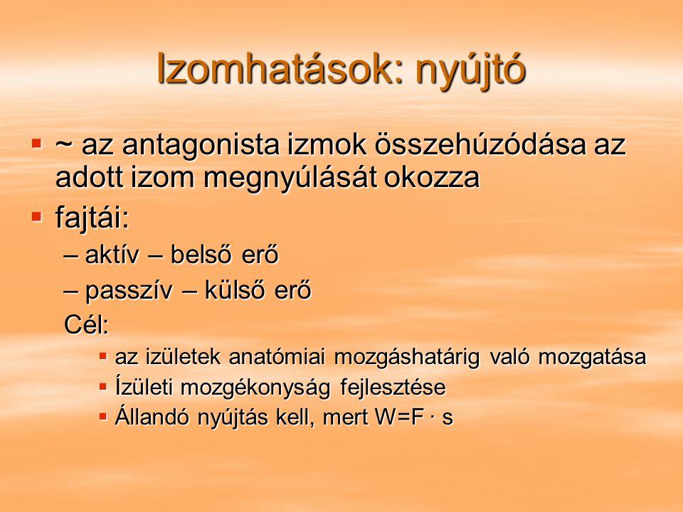 Izomhatások: nyújtó  ~ az antagonista izmok összehúzódása az adott izom megnyúlását okozza  fajtái: –aktív – belső erő –passzív – külső erő Cél:  a