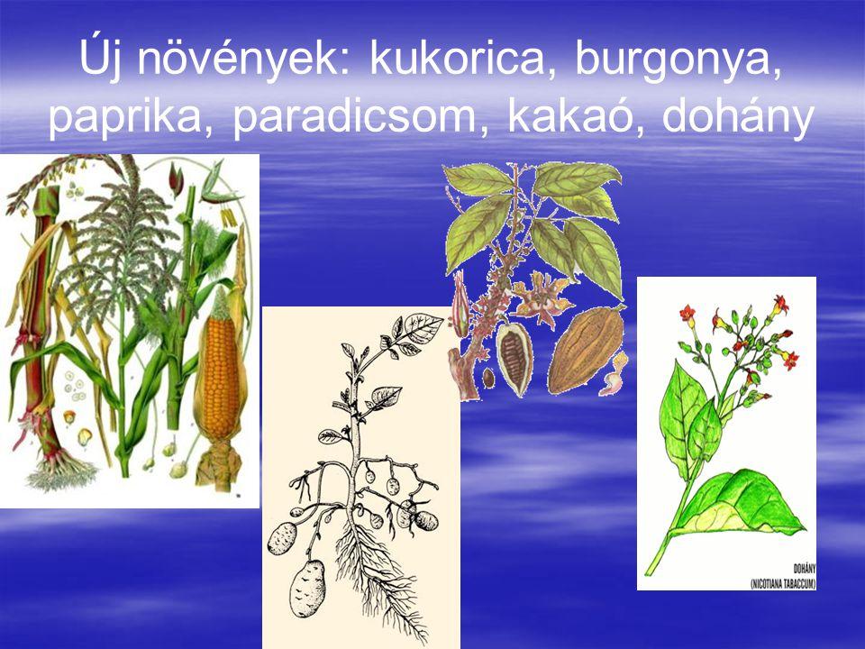Új növények: kukorica, burgonya, paprika, paradicsom, kakaó, dohány
