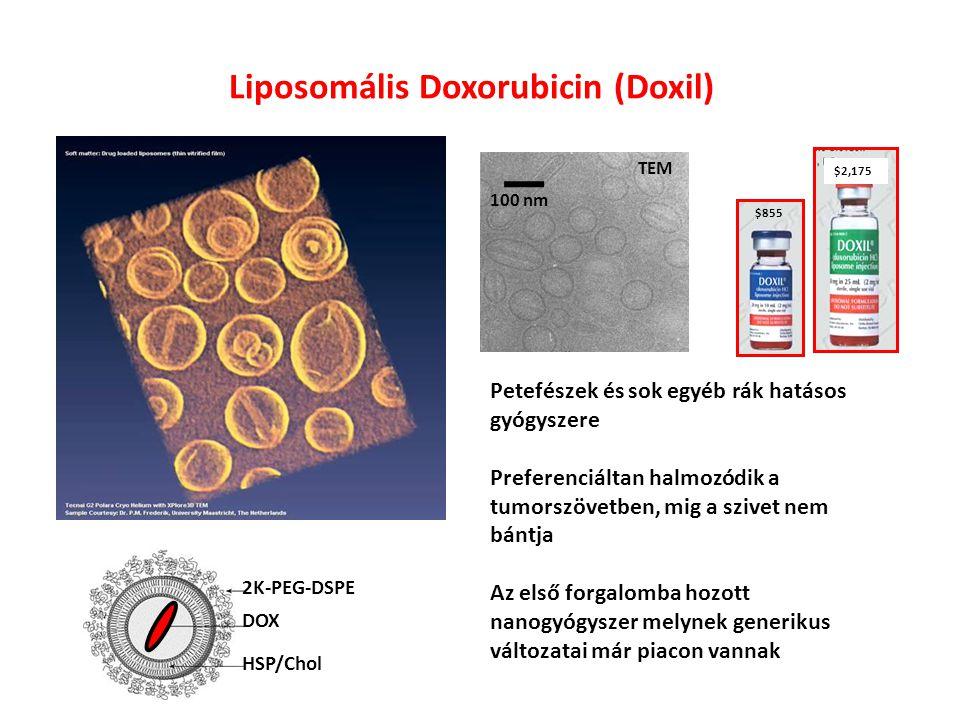 Liposomális Doxorubicin (Doxil) HSP/Chol 2K-PEG-DSPE DOX TEM Séma $855 $2,175 Petefészek és sok egyéb rák hatásos gyógyszere Preferenciáltan halmozódik a tumorszövetben, mig a szivet nem bántja Az első forgalomba hozott nanogyógyszer melynek generikus változatai már piacon vannak 100 nm