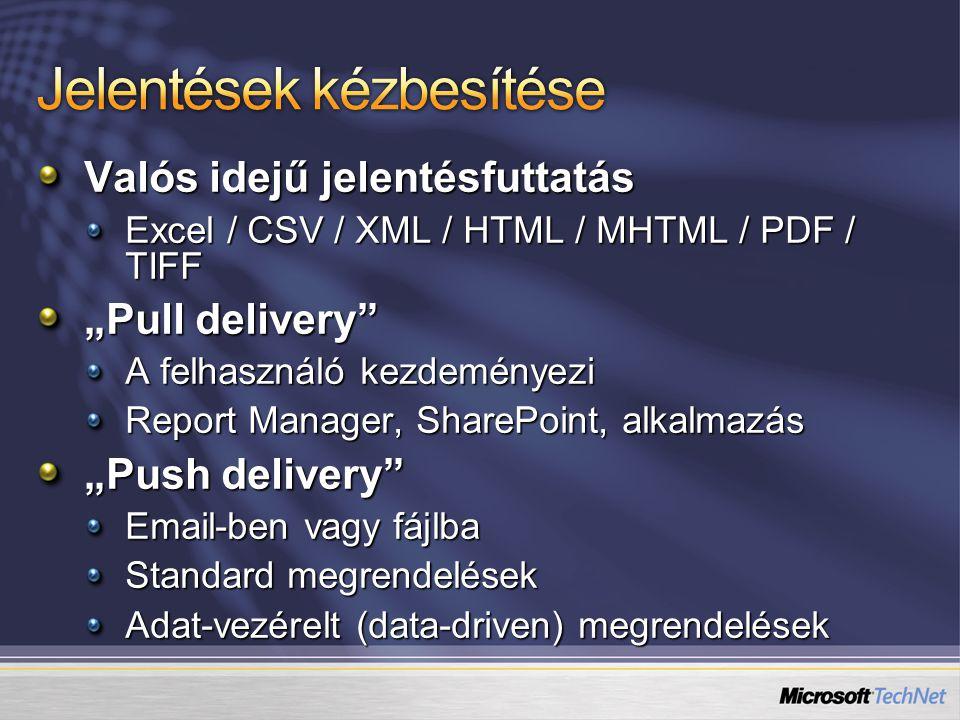 """Valós idejű jelentésfuttatás Excel / CSV / XML / HTML / MHTML / PDF / TIFF """"Pull delivery"""" A felhasználó kezdeményezi Report Manager, SharePoint, alka"""