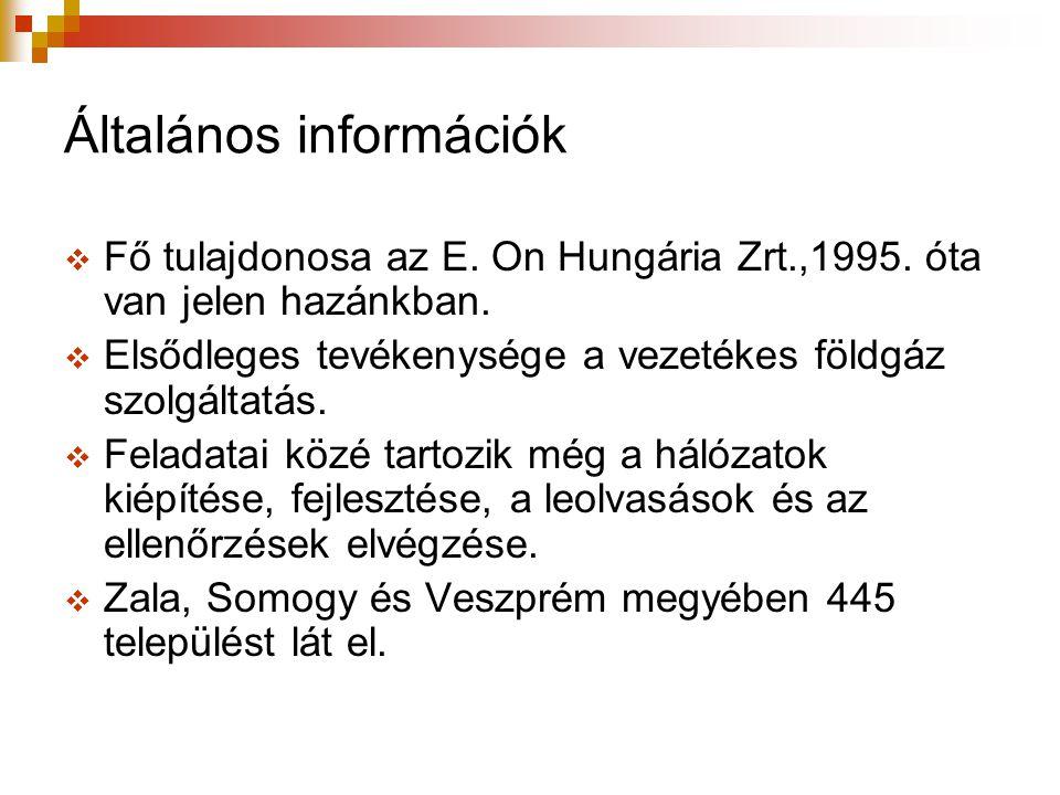 Általános információk  Fő tulajdonosa az E. On Hungária Zrt.,1995.