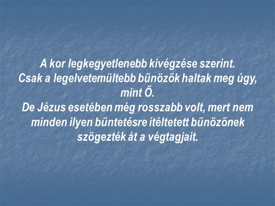 Fogadd el azt az igazságot, hogy Jézus az egyetlen a világ mentésére.