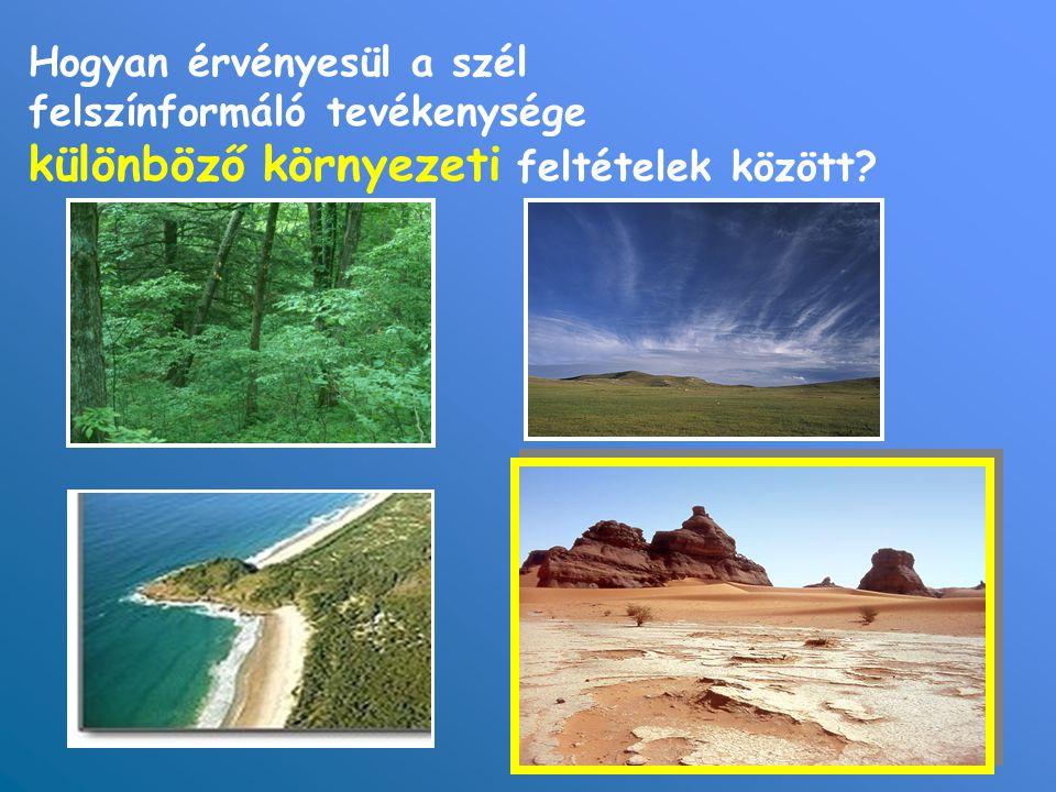 Hogyan érvényesül a szél felszínformáló tevékenysége különböző környezeti feltételek között?