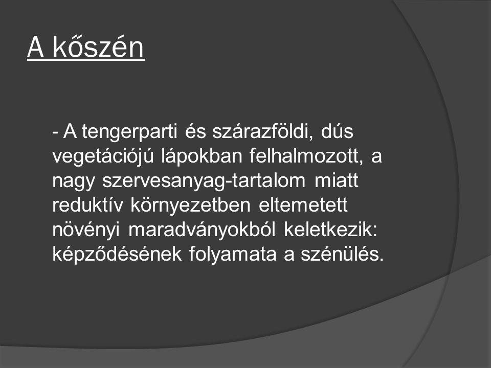 http://www.vilaglex.hu/Lexikon/Html/Koszen.htm