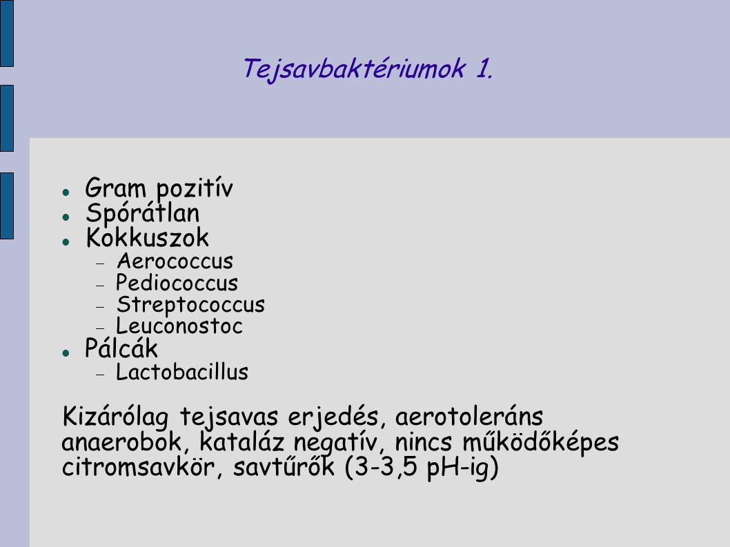 Tejsavbaktériumok 1. Gram pozitív Spórátlan Kokkuszok  Aerococcus  Pediococcus  Streptococcus  Leuconostoc Pálcák  Lactobacillus Kizárólag tejsav