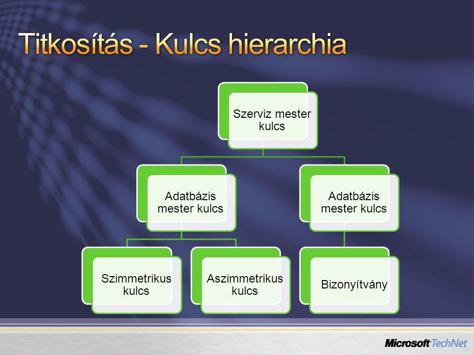 Szerviz mester kulcs SQL példányonként jön létre telepítés utáni első indításkor.