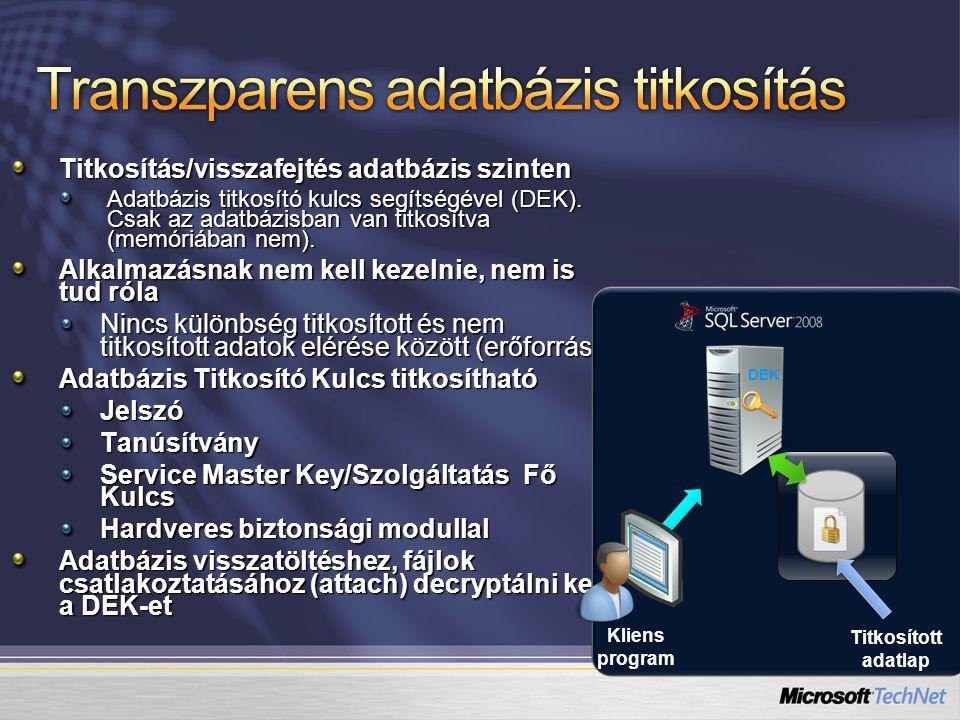 Titkosítás/visszafejtés adatbázis szinten Adatbázis titkosító kulcs segítségével (DEK).