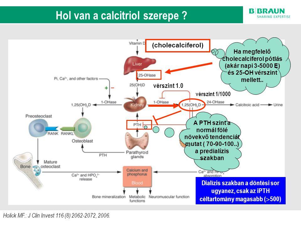 sl | Page10 Holick MF.: J Clin Invest 116 (8) 2062-2072, 2006. A D-vitamin anyagcsere szab á lyoz á si k ö rei (cholecalciferol) vérszint 1/1000 vérsz