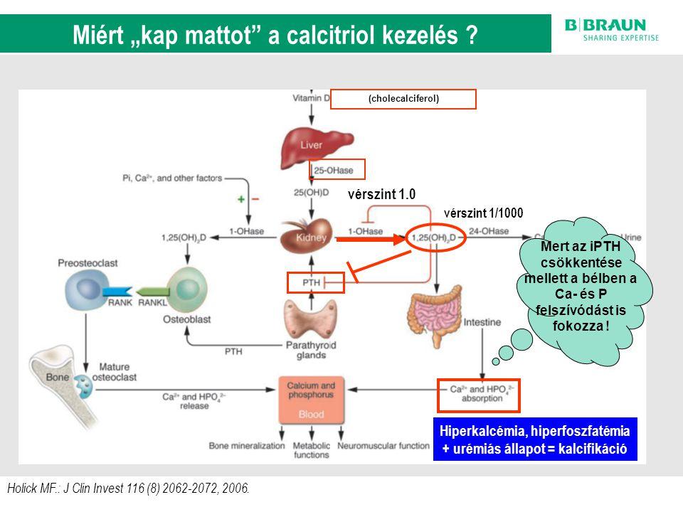 sl | Page11 Holick MF.: J Clin Invest 116 (8) 2062-2072, 2006. A D-vitamin anyagcsere szab á lyoz á si k ö rei (cholecalciferol) vérszint 1/1000 vérsz