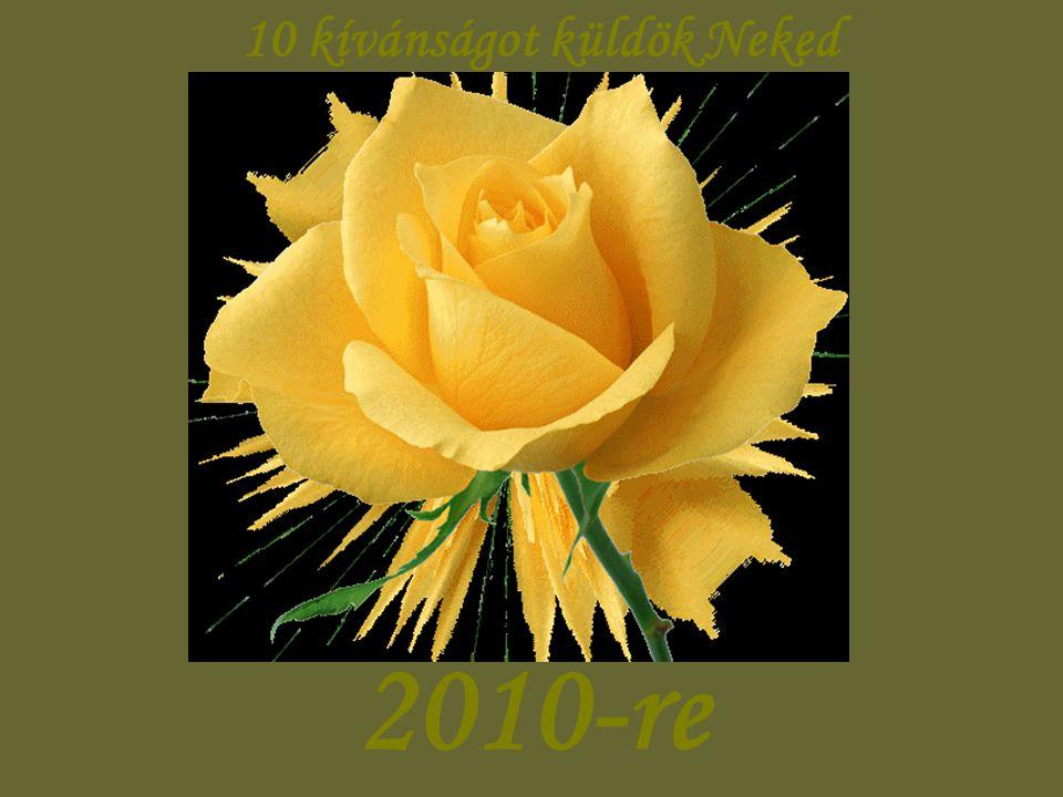 10 kívánságot küldök Neked 2010-re